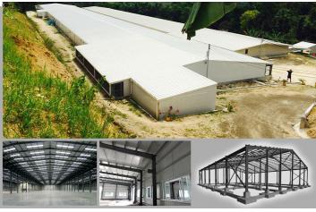 Prefabricated Steel Warehouse Solution